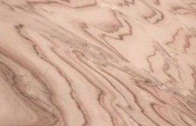 brown-white - от 6400 рублей/м2